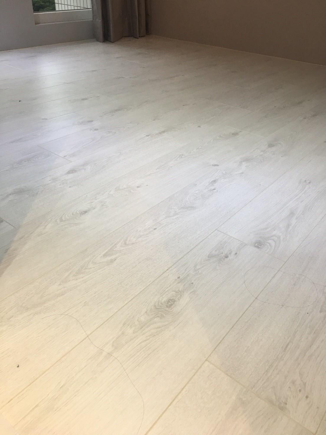 Vitality 比利時原裝進口 超耐磨地板 純白橡木(新店)
